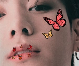 aesthetic, butterfly, and colorful image