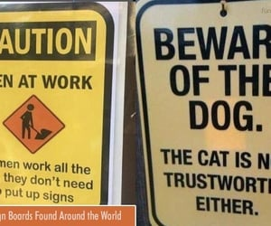 funny, funny picture, and sign board image