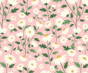 art, daisy, and design image