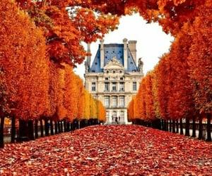 autunm, jardin des tuileries, and outono em paris image