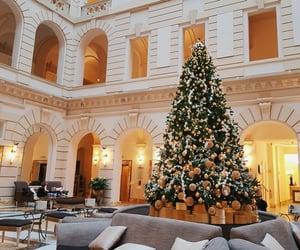 budapest, christmas tree, and fashion image