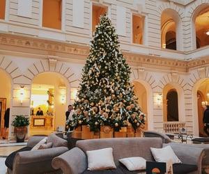 budapest, christmas, and christmas tree image