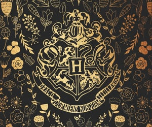 [this or that] Hufflepuff & Ravenclaw