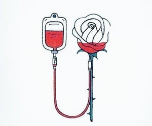 blood, donate, and red image