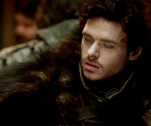 gif, a song of ice and fire, and robb stark image