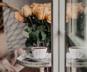 coffee, field, and roses image