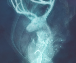 harry potter, expecto patronum, and deer image