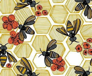 bee, miel, and abeja image