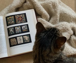 art, autumn, and book image