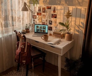 desk and plants image