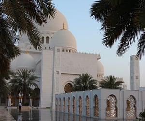 abu dhabi, architectural, and palm trees image