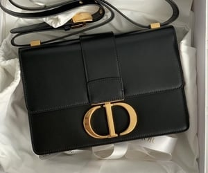 bag, accessories, and dior image