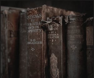 books, vintage, and old image