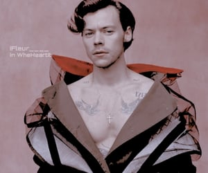theme, harrystyles, and Harry Styles image