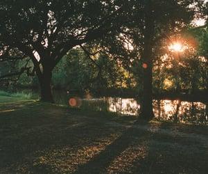 autumn, sunset, and vintage image
