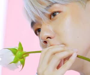 edit, exo, and flower image
