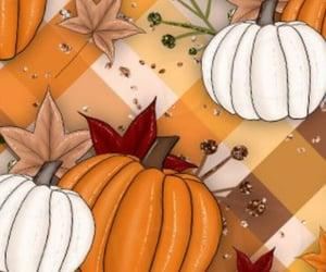 leaf, patterns, and pumpkins image