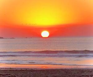 ocean, sun, and vivalavida image