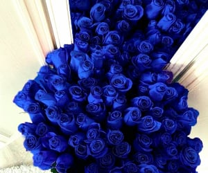 Blue Roses in front of mirror