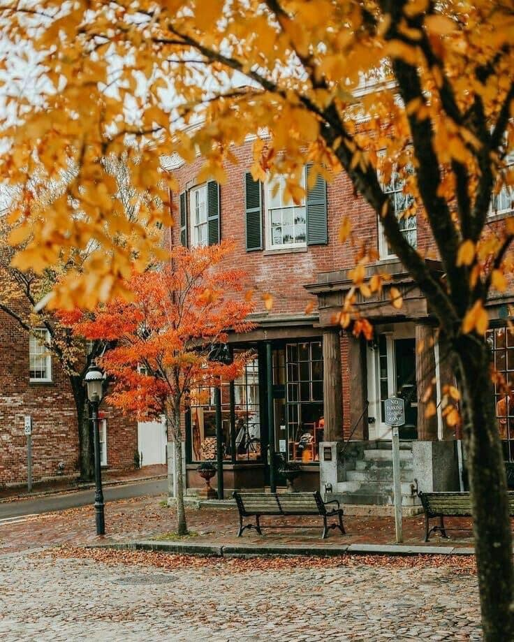 autumn, cozy, and mood image