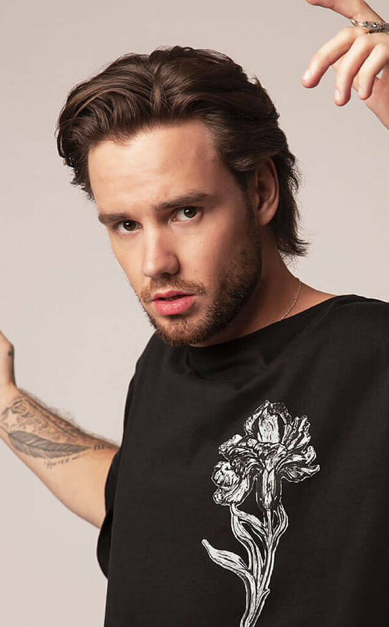 celebrities, music, and liam payne image
