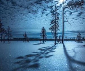snow, night, and trees image