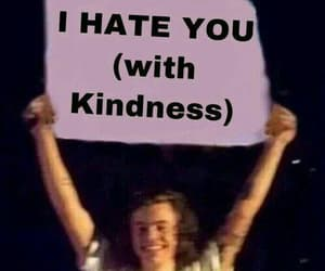 meme, memes, and Harry Styles image