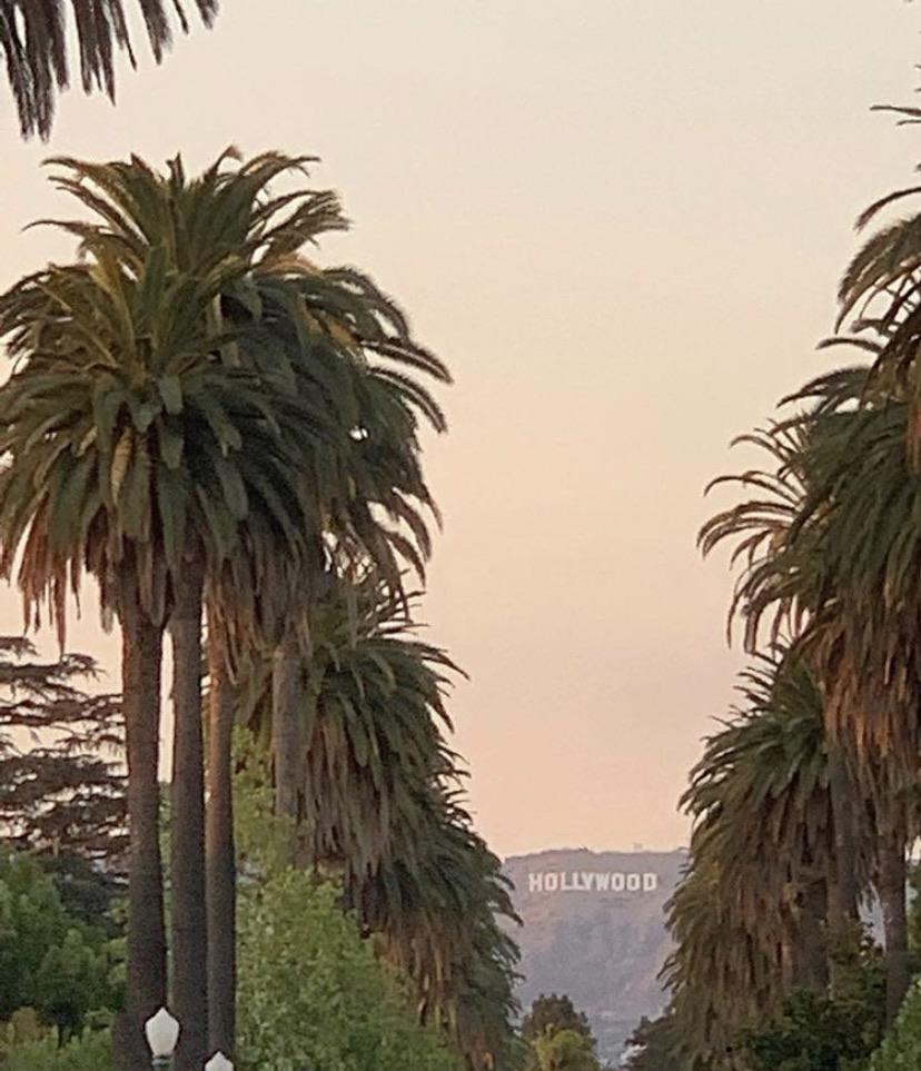 hollywood, orange, and sunset image