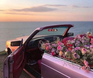 car, flowers, and nature image