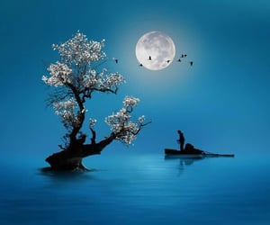 blue, moon, and tree image