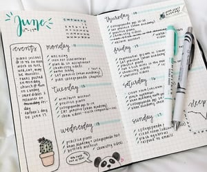 college, study, and bujo image