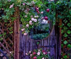 door, flowers, and garden image