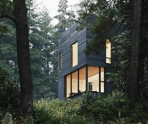 design, forest, and home image