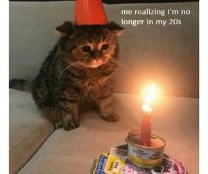 cat, birthday, and sad image