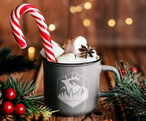 christmas, drink, and marshmallow image