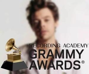 GRAMMY AWARDS •Best pop vocal album>Fine Line •Best pop solo performance>Watemelon sugar •Best music video>Adore you