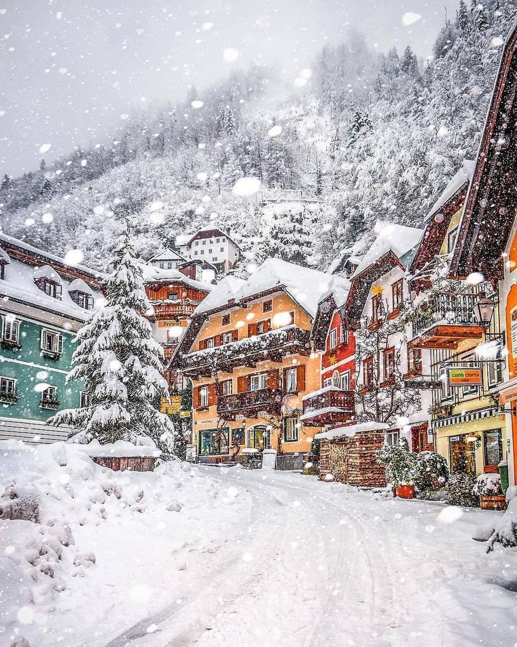 snow, winter, and austria image