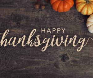 article, havefun, and happythanksgiving image