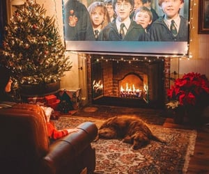 christmas, harry potter, and dog image