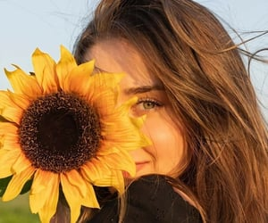 girl, hair, and sunflower image