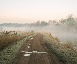 nature, road, and aesthetic image
