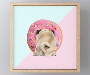 art love, dog love, and pug lover image
