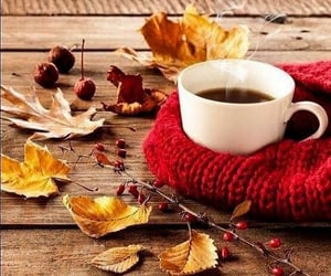 May your coffee be strong and your day full of pleasure.