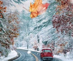 autumn, autumnal, and cars image