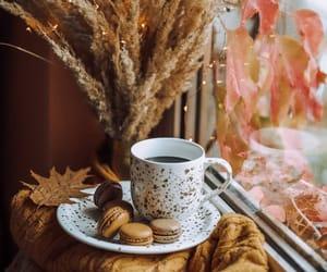 autumn, coffee cups, and coffee mugs image