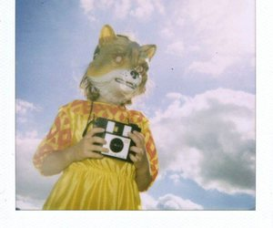 camera, fox, and mask image