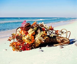 beaches, thanksgiving, and fall image