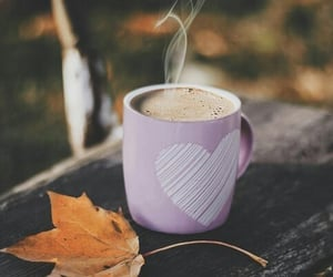 coffee, drink, and autumn image