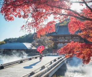 autumn, japan, and instagram image