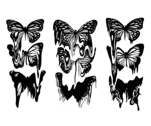 butterfly, draft, and draw image
